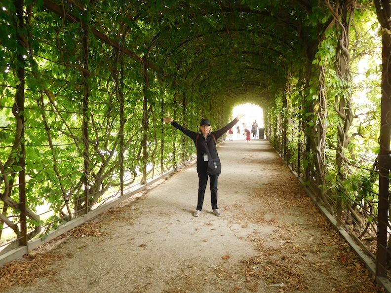 schonbrunn-garden-1